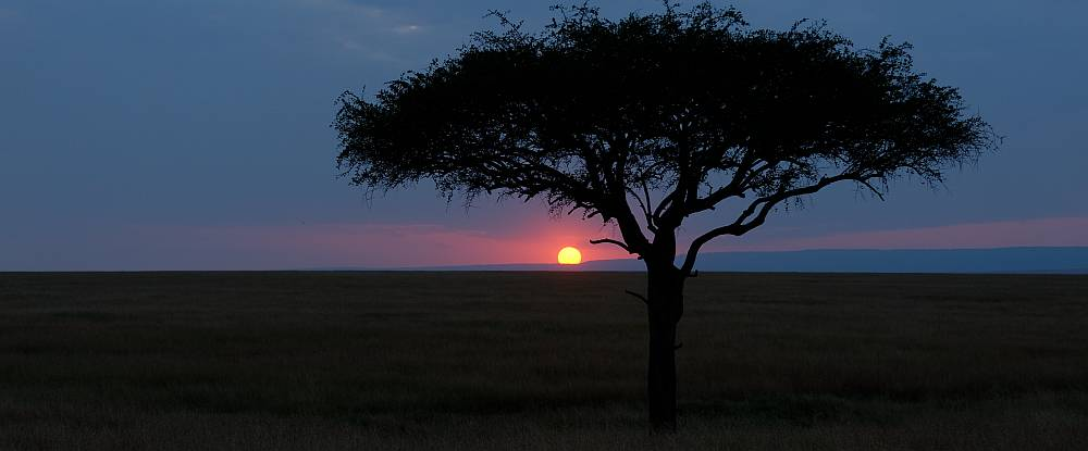 Sundowner in der Masai-Mara